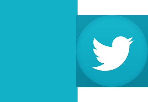 social_media_twitter_noLine